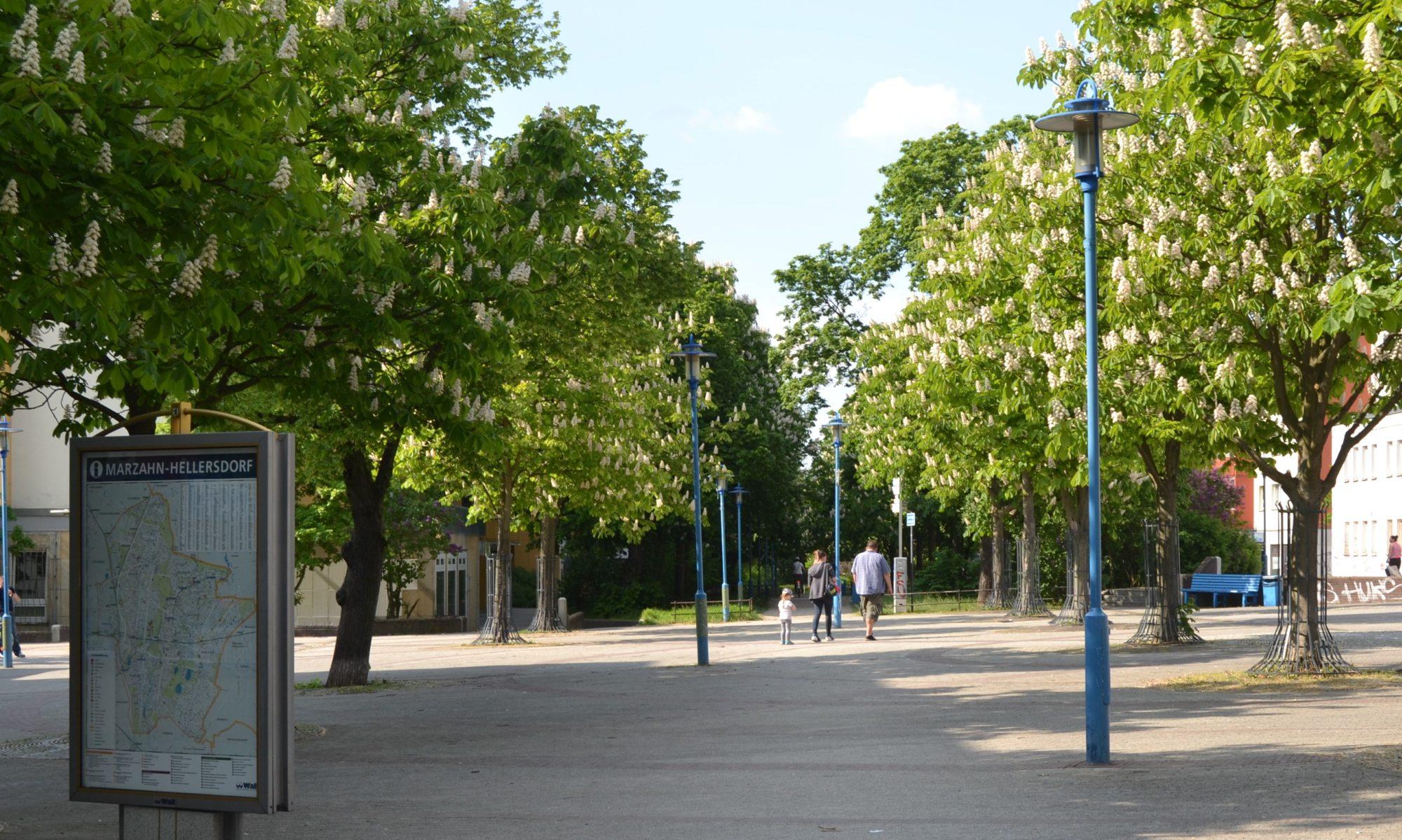 Bild: QM Boulevard Kastanienallee